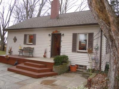 Single Family Home For Sale: 27397 Cook Rd