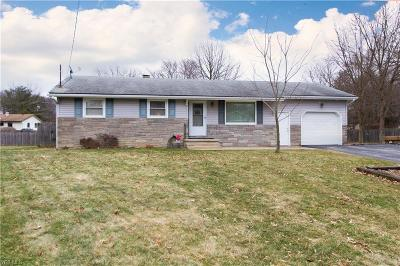 Canfield Single Family Home For Sale: 3681 Brookview Ct