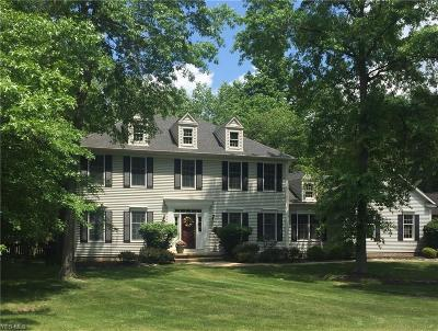 Summit County Single Family Home For Sale: 245 Oldham Way
