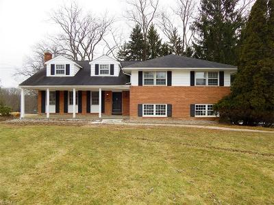 Medina OH Single Family Home For Sale: $278,500