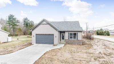 Lorain County Single Family Home For Sale: 47561 Middle Ridge Rd