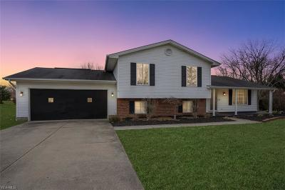 Canfield Single Family Home For Sale: 6945 Slippery Rock Dr