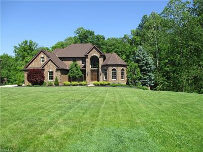 Hinckley Single Family Home For Sale: 205 Somerset Dr