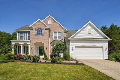 Sagamore Hills Single Family Home For Sale: 8045 Summersweet Trl