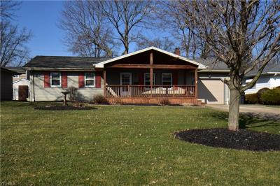 Youngstown Single Family Home For Sale: 4262 Selkirk Ave