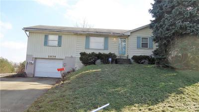 Youngstown Single Family Home For Sale: 1977 Burbank Ave