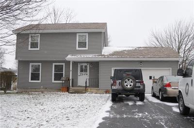 Canfield Single Family Home For Sale: 3425 Heritage Ct South