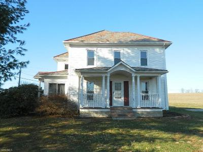 Licking County Single Family Home For Sale: 11703 Macks Rd