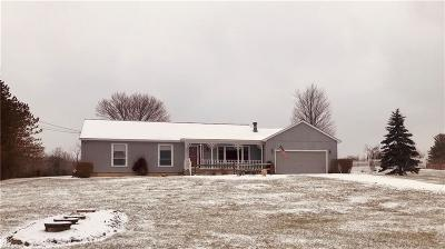Medina County Single Family Home For Sale: 8818 Friendsville Rd