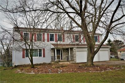 Medina County Single Family Home For Sale: 4108 Beverly Hills Dr