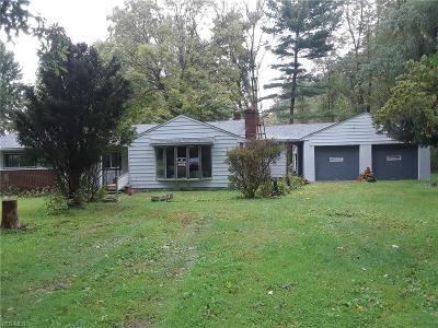 Leavittsburg Single Family Home For Sale: 4091 Nelson Mosier Rd