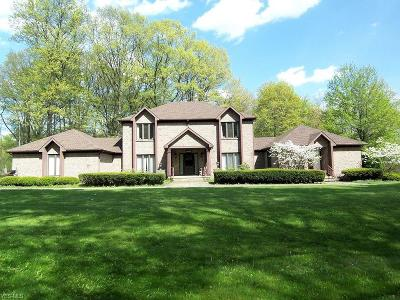 Austintown Single Family Home For Sale: 3055 S Raccoon Road