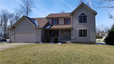 Mentor Single Family Home For Sale: 6540 Chase Dr