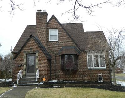 Euclid Single Family Home For Sale: 374 East 210 St