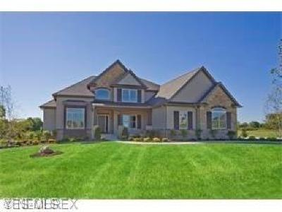 Medina County Single Family Home For Sale: 55 Kenroy