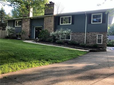 Chardon Single Family Home For Sale: 9910 Ravenna Road