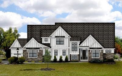 Brecksville Single Family Home For Sale: 6520 Summer Wind Dr