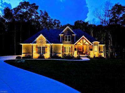 Medina Single Family Home For Sale: 7799 Emerald Run Rd