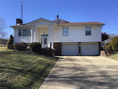 Columbiana County Single Family Home For Sale: 14561 Old Fredericktown Rd