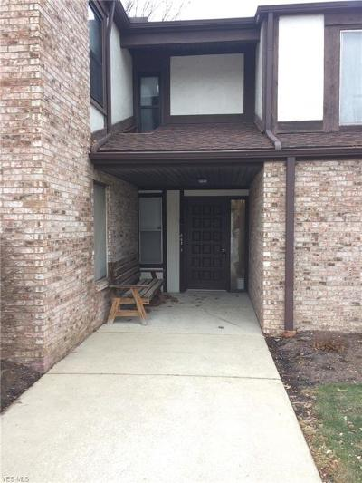 Westlake Condo/Townhouse For Sale: 29347 Detroit Rd #2