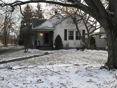 Lorain County Single Family Home For Sale: 1310 King Ave