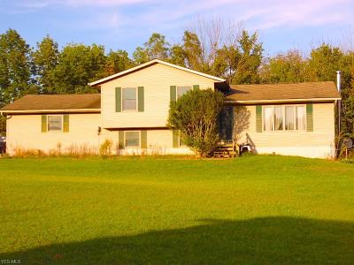 Frazeysburg Single Family Home For Sale: 16312 Township Road 389