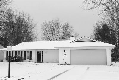 Strongsville Single Family Home For Sale: 10797 Waterfall Rd