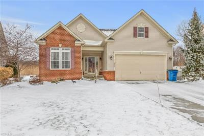 Painesville Township Single Family Home For Sale: 1542 Elderberry Ln