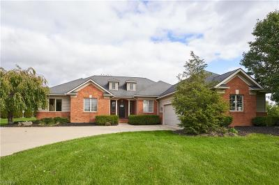 Wadsworth Single Family Home For Sale: 7301 Grindle Rd