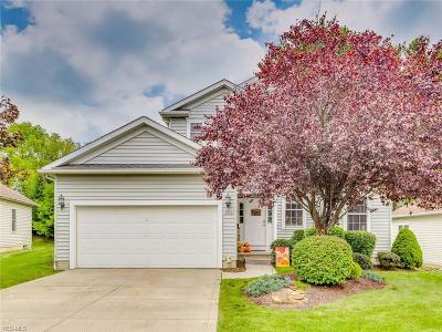 Single Family Home For Sale: 1082 Stonegate Trl