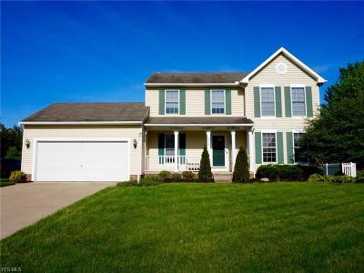 Kent Single Family Home For Sale: 4073 Chapman Drive