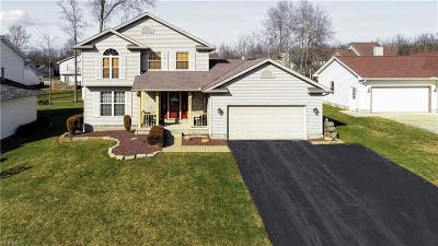 Austintown Single Family Home For Sale: 6830 Winterpark Ave