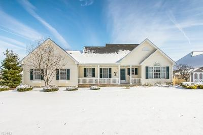 Lorain County Single Family Home For Sale: 1076 Coopers Run