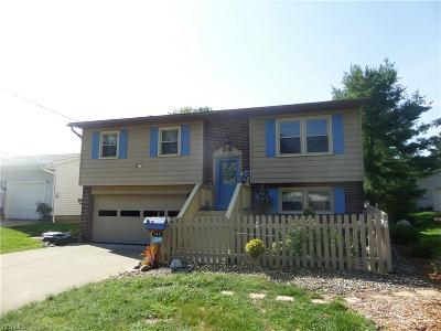 Medina County Single Family Home For Sale: 512 West Mill St