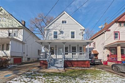 Cleveland Single Family Home For Sale: 3800 Leopold Ave