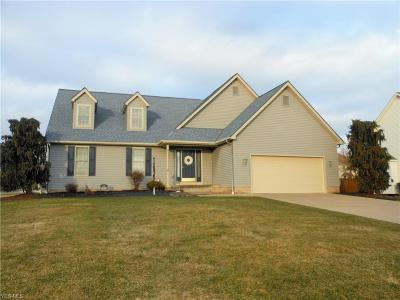 Canfield Single Family Home For Sale: 8 Willow Bend Dr