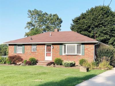 Hudson Single Family Home For Sale: 5944 Stow Road
