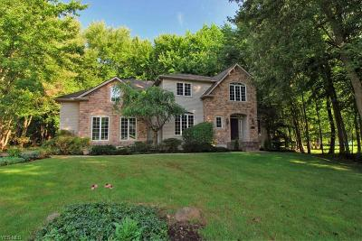 Hudson Single Family Home For Sale: 5780 Alisa Court