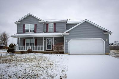 Lorain County Single Family Home For Sale: 504 Alexis Dr