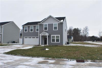 Lake County Single Family Home For Sale: 220 Emily Dr