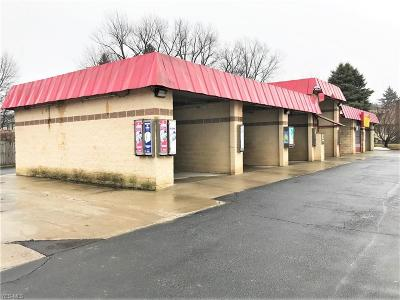 Ashtabula County Commercial For Sale: 3834 Crawford Road
