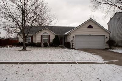 Lorain County Single Family Home For Sale: 1526 Abbe Rd South