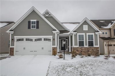 Brunswick Single Family Home For Sale: 3209 Fallen Brook Ln