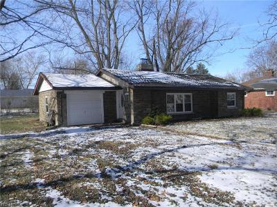 Lake County Single Family Home For Sale: 1246 Argyle Dr
