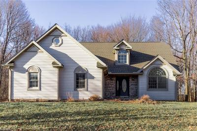 Chagrin Falls Single Family Home For Sale: 10460 Auburndale Dr