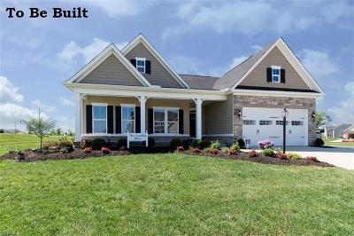 Medina County Single Family Home For Sale: 4218 Amber Glen Dr