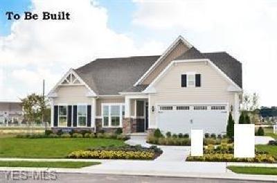 Medina County Single Family Home For Sale: 4209 Amber Glen Dr