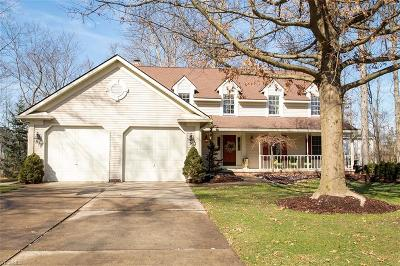 Medina County Single Family Home For Sale: 805 Woodhaven Ln