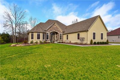 Austintown Single Family Home For Sale: 1532 Hasty Road