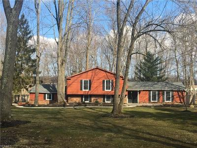 Chagrin Falls Single Family Home For Sale: 8480 West Craig Dr